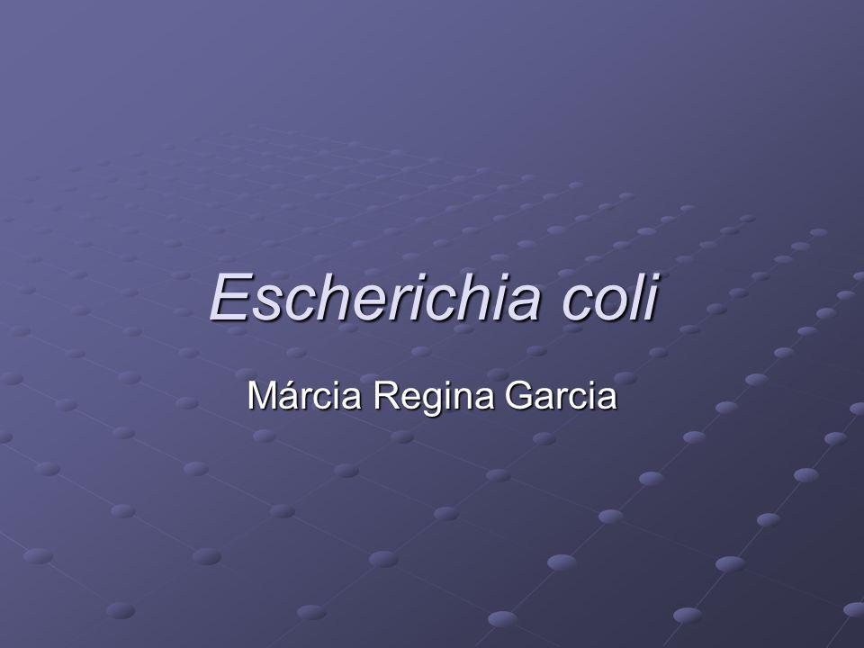 Escherichia coli Márcia Regina Garcia