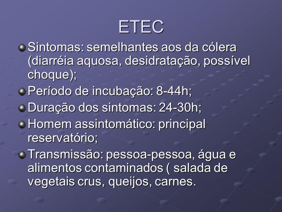 ETEC Sintomas: semelhantes aos da cólera (diarréia aquosa, desidratação, possível choque); Período de incubação: 8-44h; Duração dos sintomas: 24-30h;