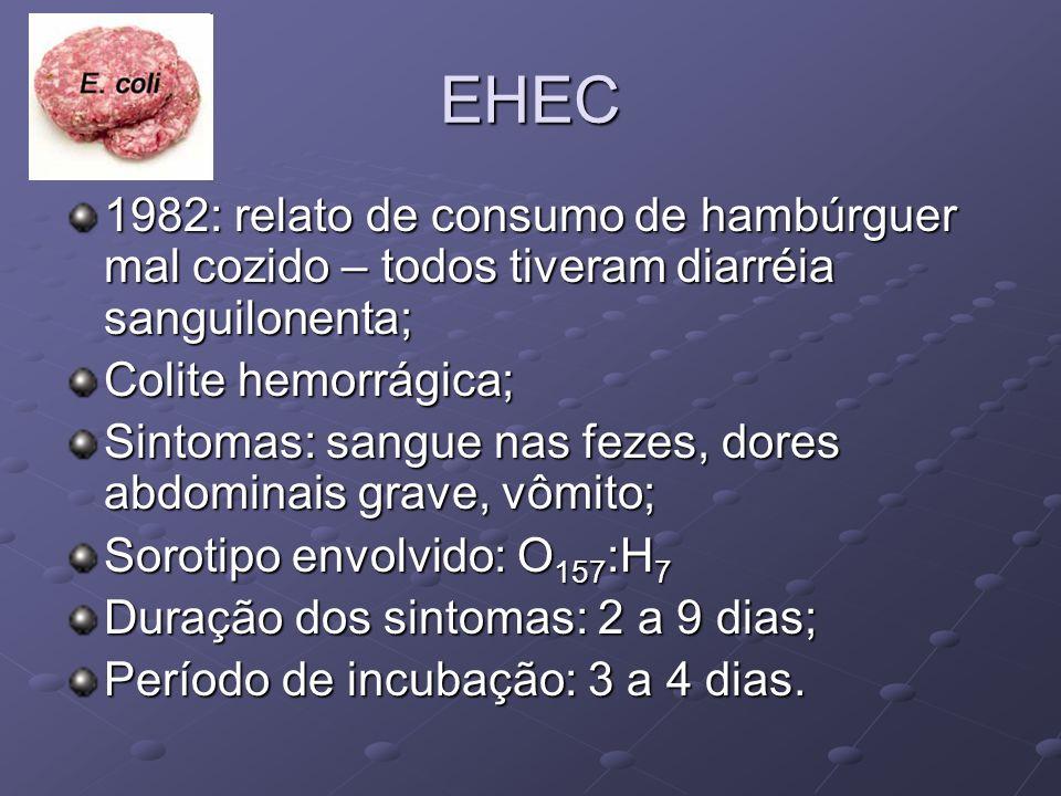 EHEC 1982: relato de consumo de hambúrguer mal cozido – todos tiveram diarréia sanguilonenta; Colite hemorrágica; Sintomas: sangue nas fezes, dores ab