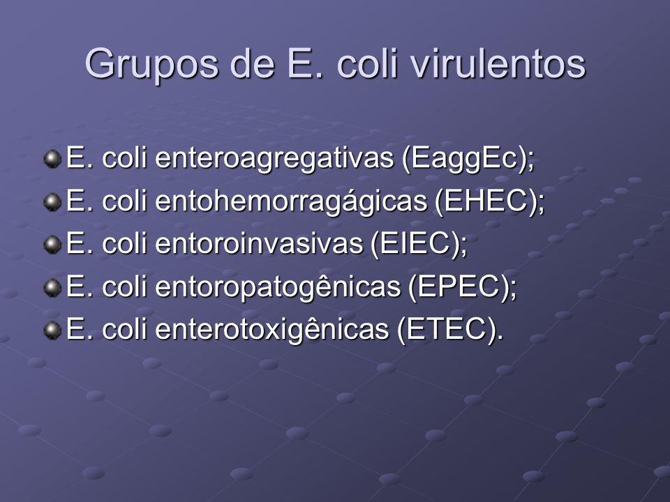 Grupos de E. coli virulentos E. coli enteroagregativas (EaggEc); E. coli entohemorragágicas (EHEC); E. coli entoroinvasivas (EIEC); E. coli entoropato