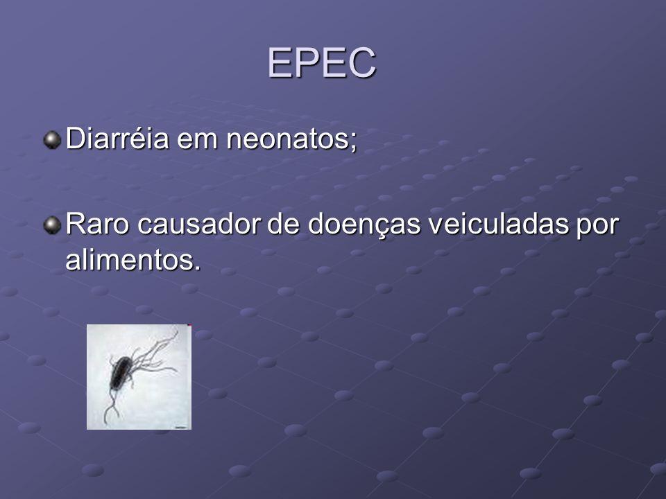 EPEC Diarréia em neonatos; Raro causador de doenças veiculadas por alimentos.