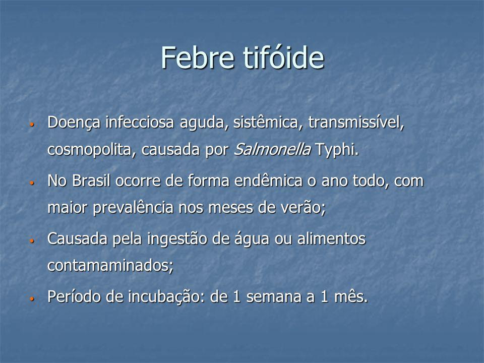 Febre tifóide Doença infecciosa aguda, sistêmica, transmissível, cosmopolita, causada por Salmonella Typhi. Doença infecciosa aguda, sistêmica, transm