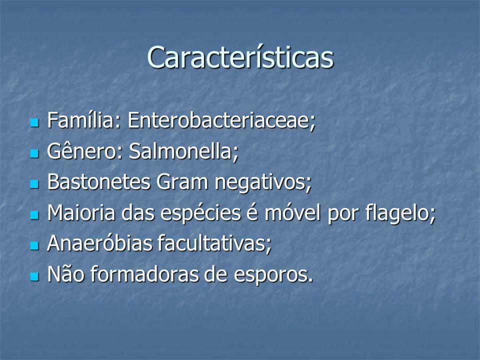 Características Família: Enterobacteriaceae; Família: Enterobacteriaceae; Gênero: Salmonella; Gênero: Salmonella; Bastonetes Gram negativos; Bastonete