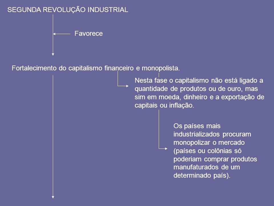 SEGUNDA REVOLUÇÃO INDUSTRIAL Favorece Fortalecimento do capitalismo financeiro e monopolista. Nesta fase o capitalismo não está ligado a quantidade de