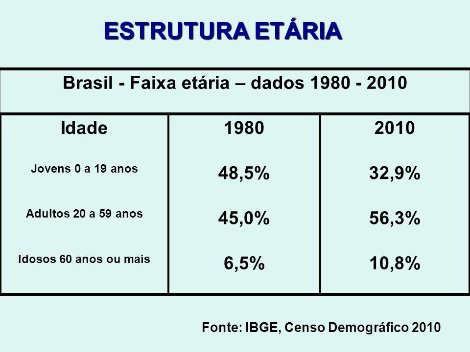 Brasil - Faixa etária – dados 1980 - 2010 Idade19802010 Jovens 0 a 19 anos 48,5%32,9% Adultos 20 a 59 anos 45,0%56,3% Idosos 60 anos ou mais 6,5%10,8%