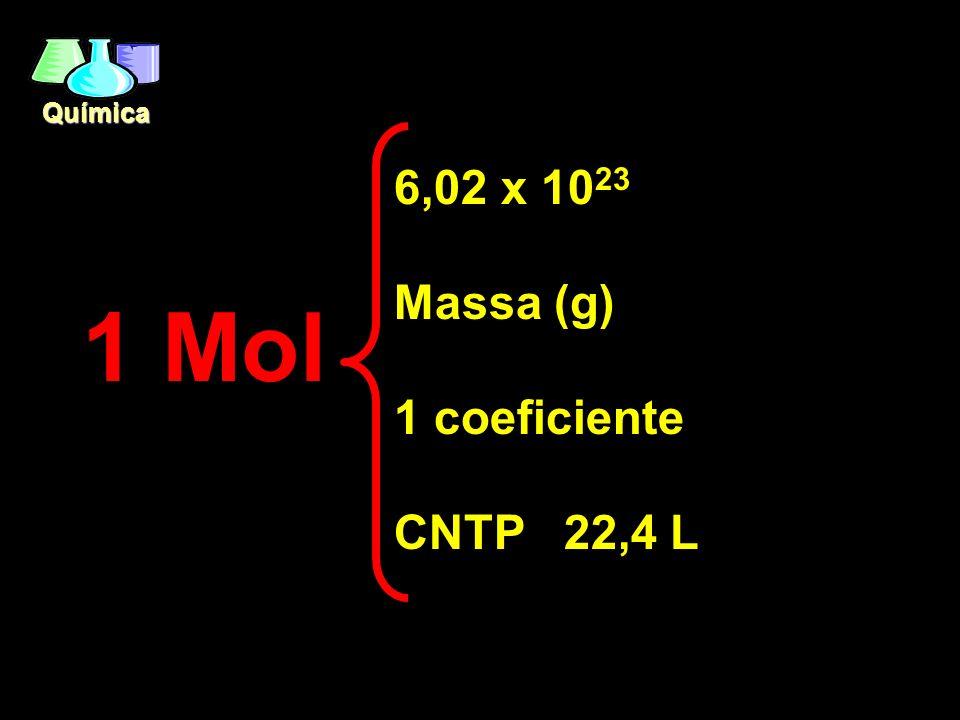 Química 1 Mol 6,02 x 10 23 Massa (g) 1 coeficiente CNTP 22,4 L