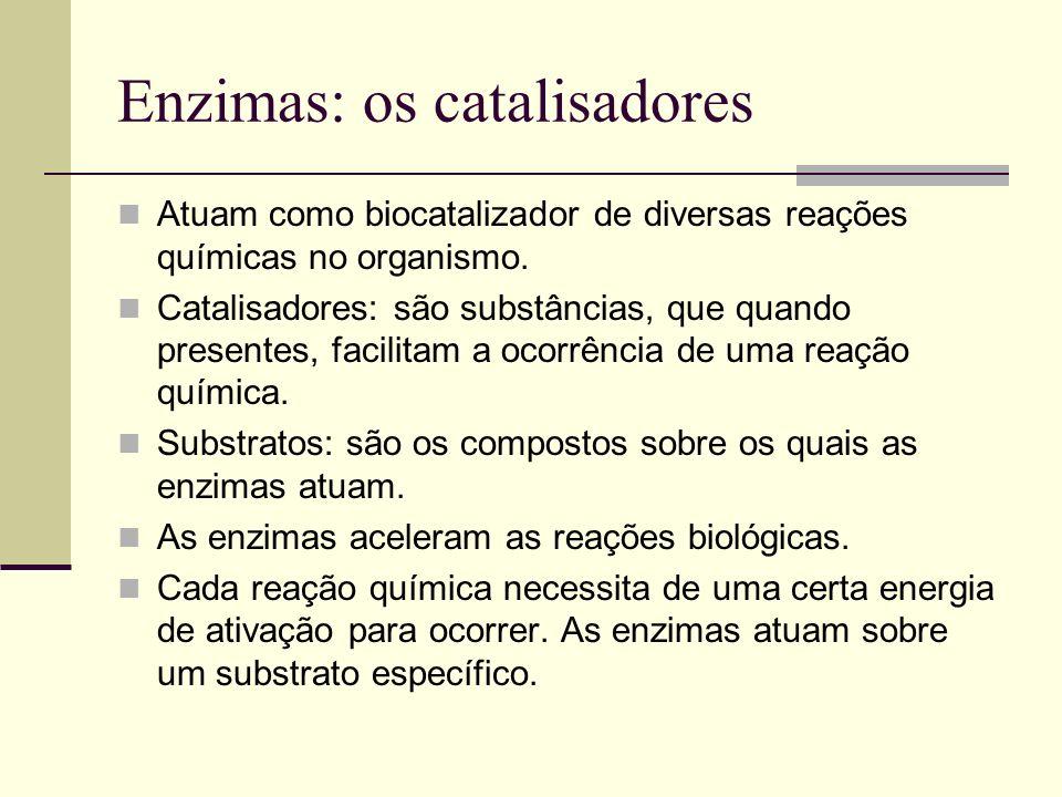 Enzimas: os catalisadores Atuam como biocatalizador de diversas reações químicas no organismo. Catalisadores: são substâncias, que quando presentes, f