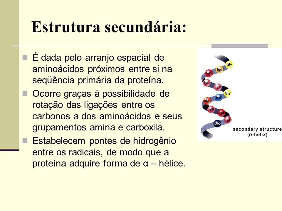 Estrutura secundária: É dada pelo arranjo espacial de aminoácidos próximos entre si na seqüência primária da proteína. Ocorre graças à possibilidade d