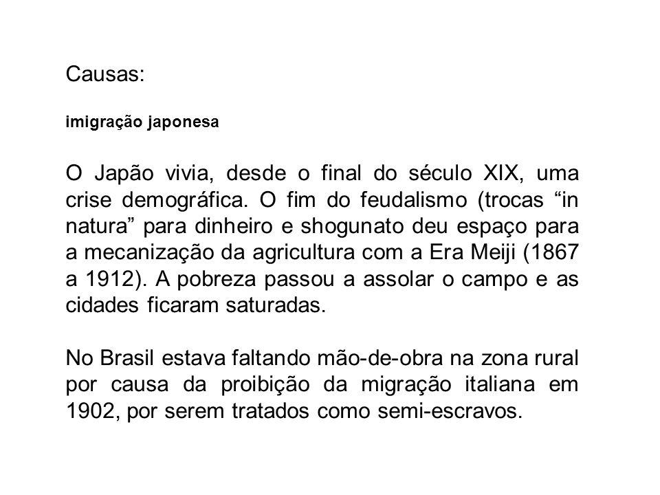 Causas: imigração japonesa O Japão vivia, desde o final do século XIX, uma crise demográfica. O fim do feudalismo (trocas in natura para dinheiro e sh