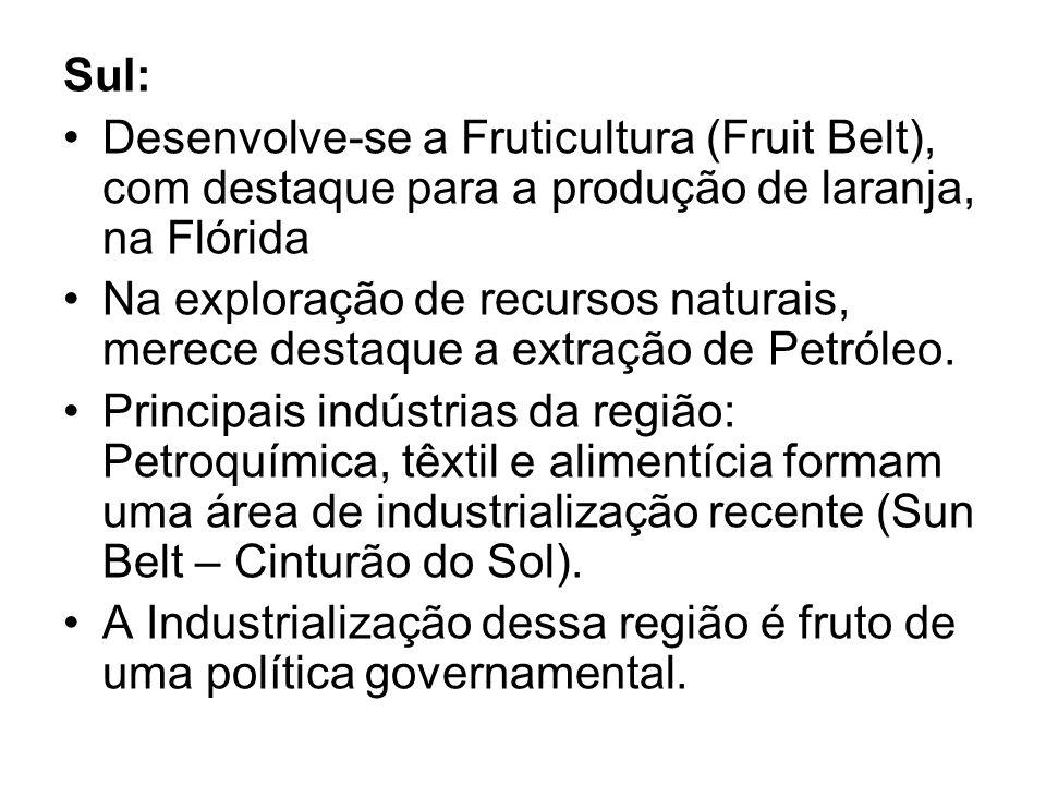 Sul: Desenvolve-se a Fruticultura (Fruit Belt), com destaque para a produção de laranja, na Flórida Na exploração de recursos naturais, merece destaqu