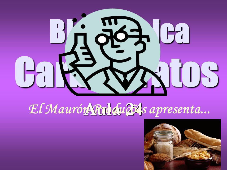 Bioquímica Carboidratos Aula 24 El Maurón Produções apresenta...