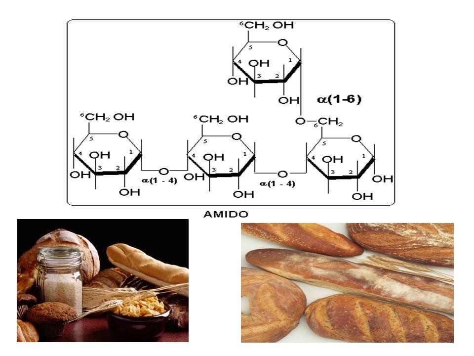 POLISSACARÍDEOFUNÇÃO E FONTE Glicogênio Açúcar de reserva energética de animais e fungos Amido Açúcar de reserva energética de vegetais e algas Celulo