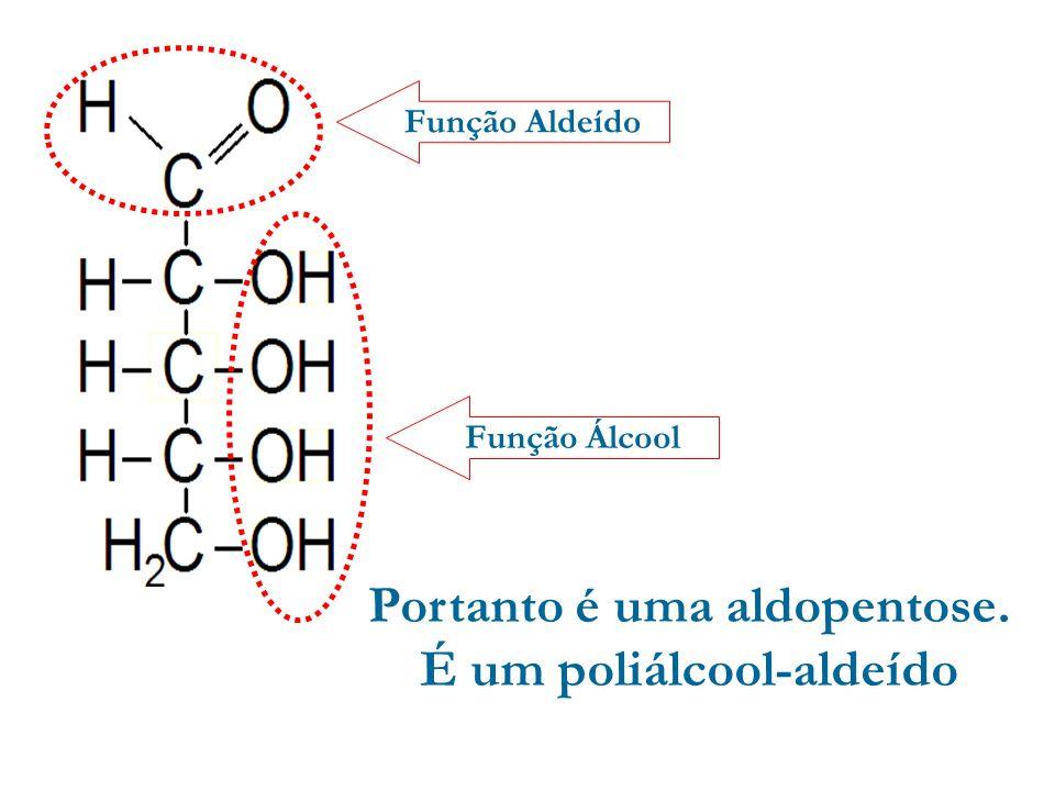 Exercício da Aula – Página 104 1) Abaixo é dada a estrutura da ribose. Assinalar a afirmação falsa: a)É uma aldopentose. b)É um poliálcool-aldeído. c)
