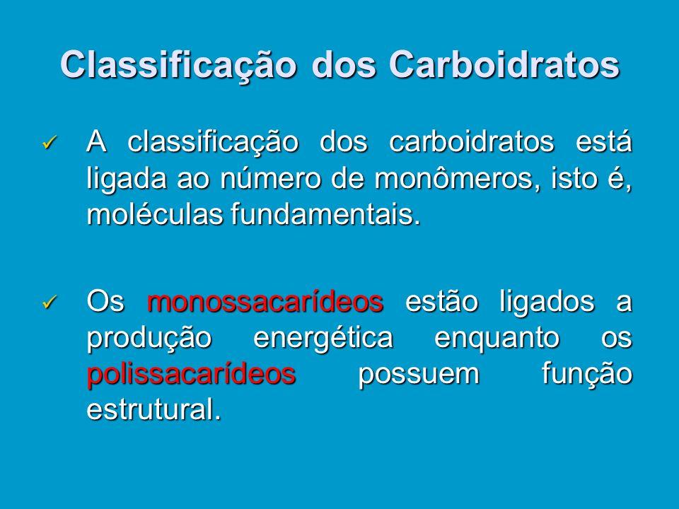 Classificação dos Carboidratos Aclassificação dos carboidratos está ligada ao número de monômeros, isto é, moléculas fundamentais.