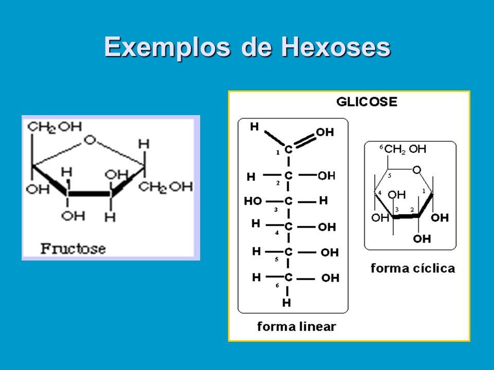 Exemplos de Hexoses