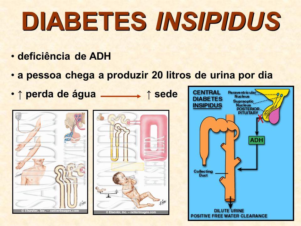 DIABETES Mellitus deficiência ou falta de insulina captação de glicose pelas células do corpo quantidade de glicose no sangue (hiperglicemia) NORMAL DIABETE