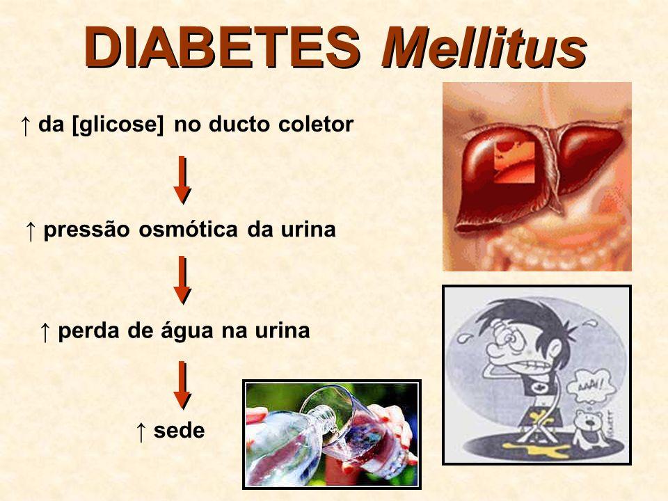 PEDRA NOS RINS Cálculo Renal cálcio, ácido úrico, oxalato, fosfato