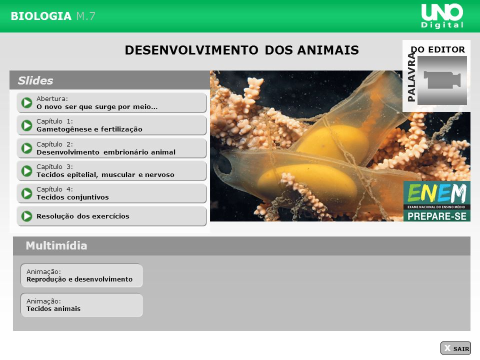 DESENVOLVIMENTO DOS ANIMAIS BIOLOGIA M.7 PALAVRA Multimídia X SAIR Abertura: O novo ser que surge por meio… Capítulo 1: Gametogênese e fertilização Ca