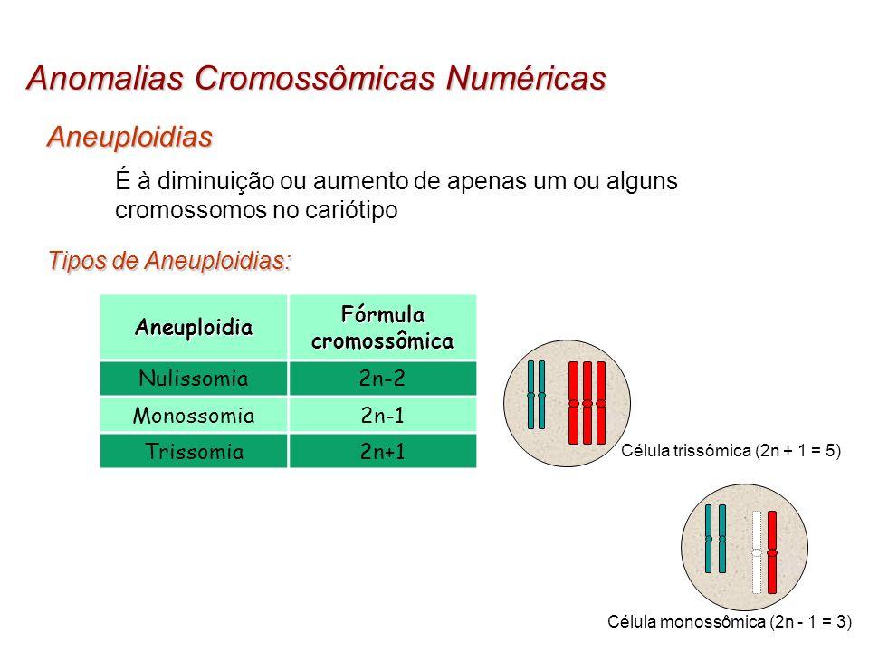 Aneuploidias Anomalias Cromossômicas Numéricas É à diminuição ou aumento de apenas um ou alguns cromossomos no cariótipo Tipos de Aneuploidias: Aneupl