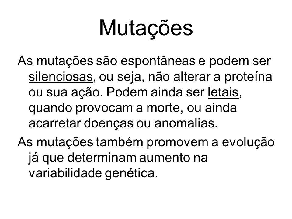 Mutações As mutações são espontâneas e podem ser silenciosas, ou seja, não alterar a proteína ou sua ação. Podem ainda ser letais, quando provocam a m