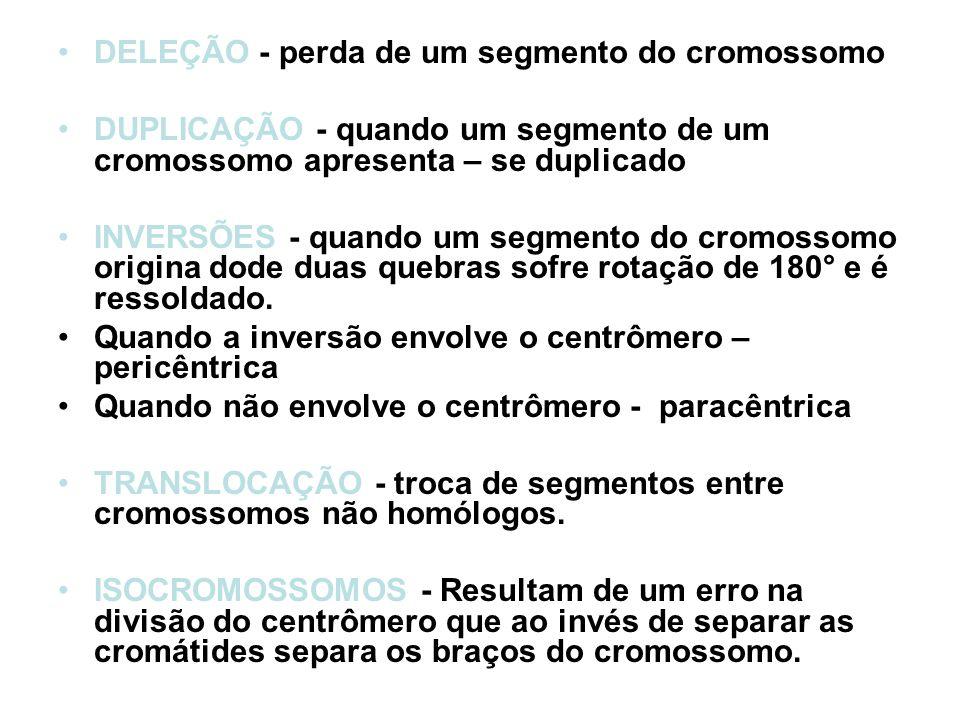 DELEÇÃO - perda de um segmento do cromossomo DUPLICAÇÃO - quando um segmento de um cromossomo apresenta – se duplicado INVERSÕES - quando um segmento