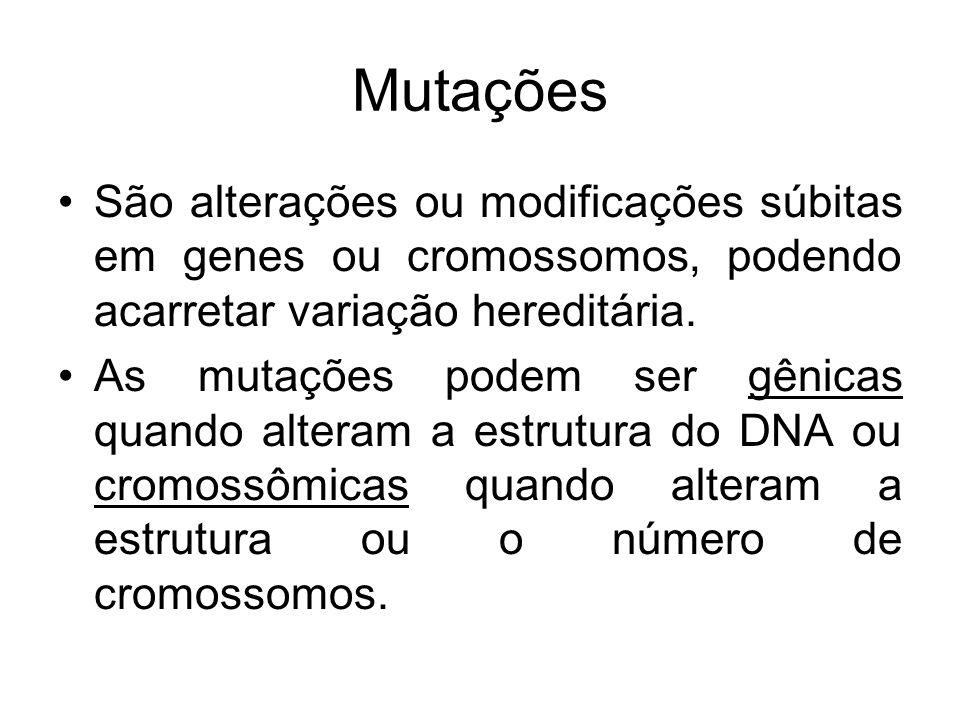 Mutações São alterações ou modificações súbitas em genes ou cromossomos, podendo acarretar variação hereditária. As mutações podem ser gênicas quando
