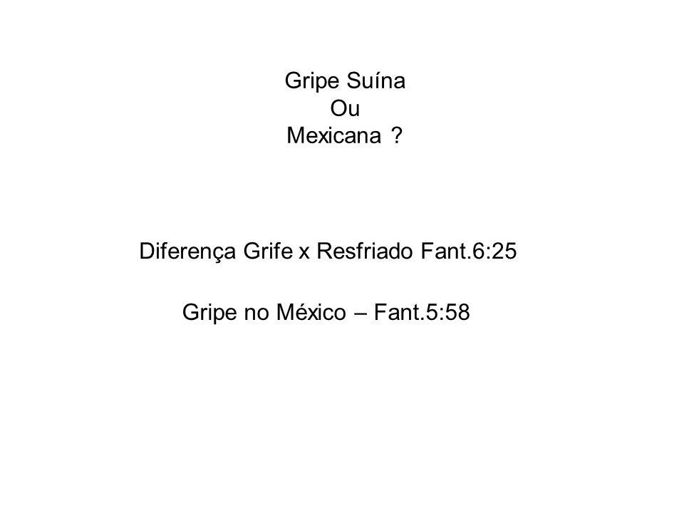 Gripe Suína Ou Mexicana ? Diferença Grife x Resfriado Fant.6:25 Gripe no México – Fant.5:58