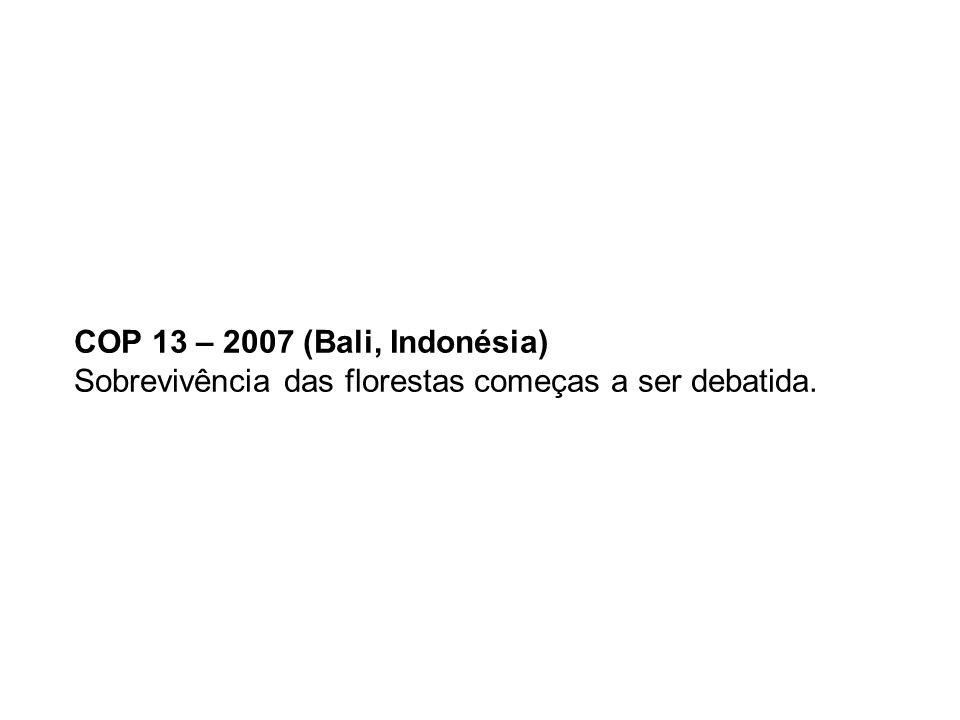 COP 14 – 2008 (Poznan, Polônia) Países desenvolvidos recusam propostas concretas de aumentar redução??.