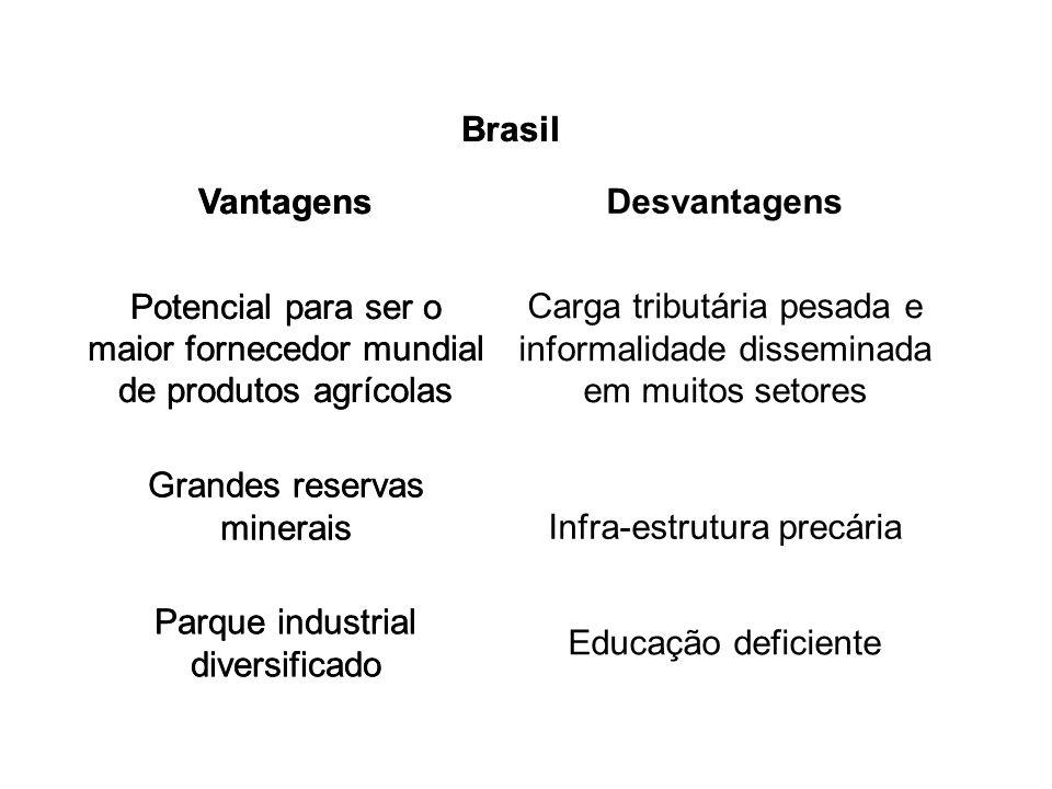 Brasil VantagensDesvantagens Potencial para ser o maior fornecedor mundial de produtos agrícolas Carga tributária pesada e informalidade disseminada e