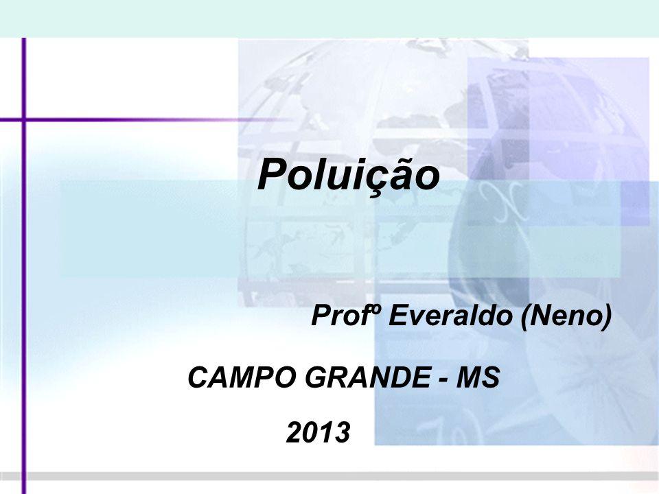 Poluição Profº Everaldo (Neno) CAMPO GRANDE - MS 2013