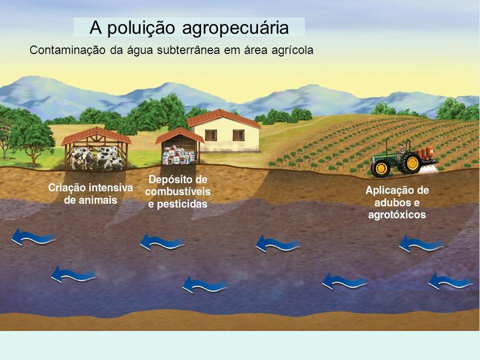 A poluição agropecuária Contaminação da água subterrânea em área agrícola