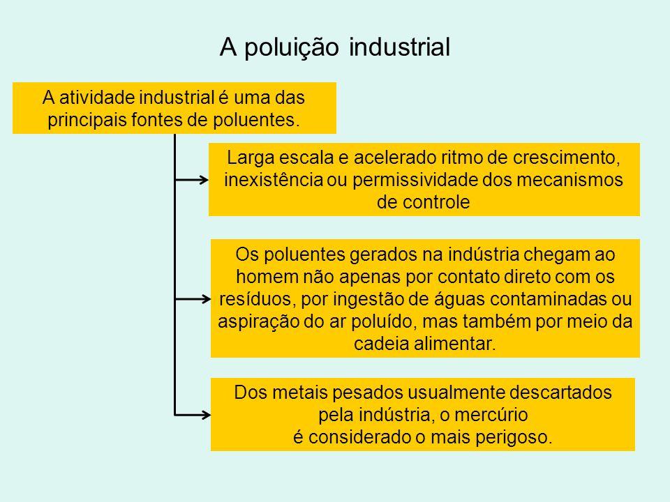 A poluição industrial A atividade industrial é uma das principais fontes de poluentes.