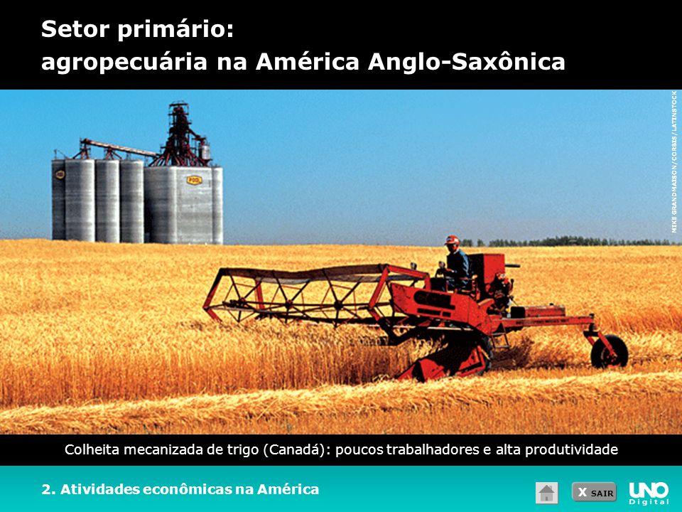 X SAIR Setor primário: agropecuária na América Anglo-Saxônica 2. Atividades econômicas na América Colheita mecanizada de trigo (Canadá): poucos trabal