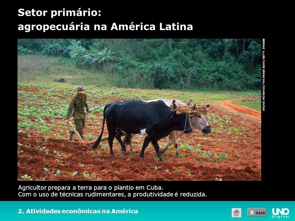 X SAIR BRUNO MORANDI/THE IMAGE BANK/GETTY IMAGES Setor primário: agropecuária na América Latina 2. Atividades econômicas na América Agricultor prepara