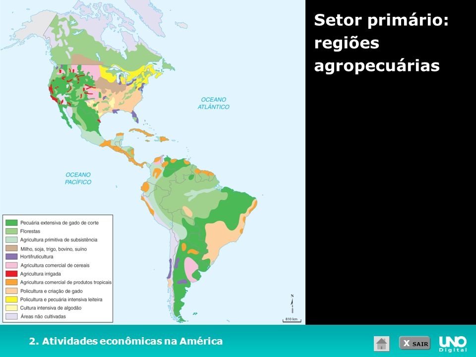 X SAIR Setor primário: regiões agropecuárias 2. Atividades econômicas na América