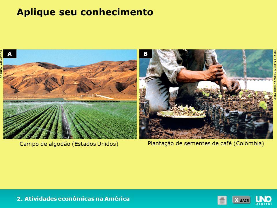 X SAIR Aplique seu conhecimento CORBIS/LATINSTOCK LIVIA CORONA/STONE/GETTY IMAGES 2. Atividades econômicas na América Campo de algodão (Estados Unidos