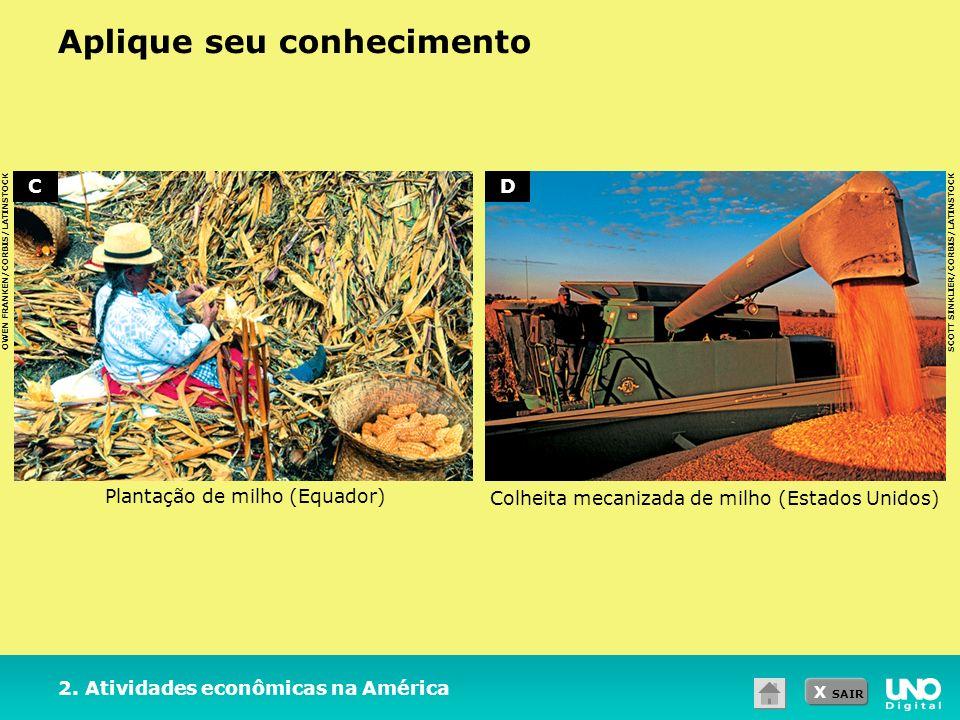 X SAIR Aplique seu conhecimento OWEN FRANKEN/CORBIS/LATINSTOCK SCOTT SINKLIER/CORBIS/LATINSTOCK 2. Atividades econômicas na América Plantação de milho