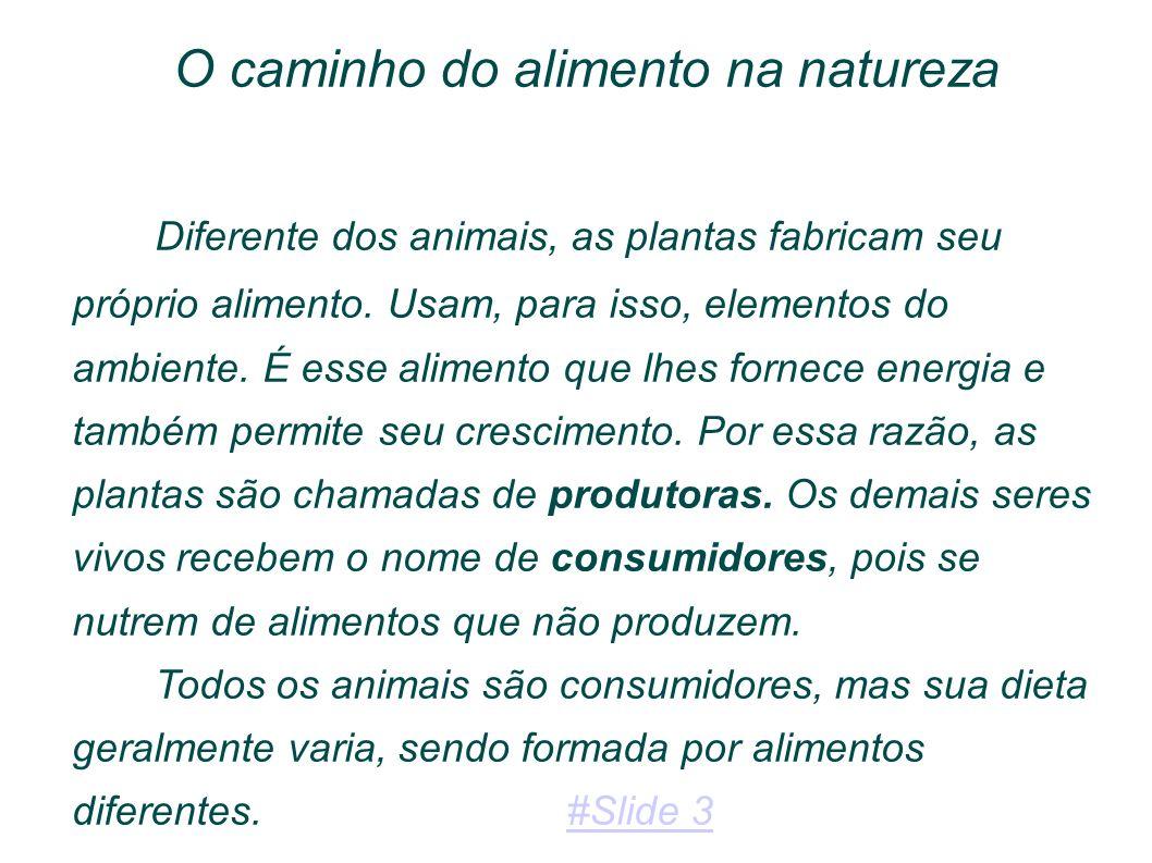 De acordo com seus hábitos alimentares, classificamos os seres vivos como: Produtores Consumidores Herbívoros: consomem vegetais Carnívoros: consomem animais Onívoros: Consomem vegetais e animais #Slide 4