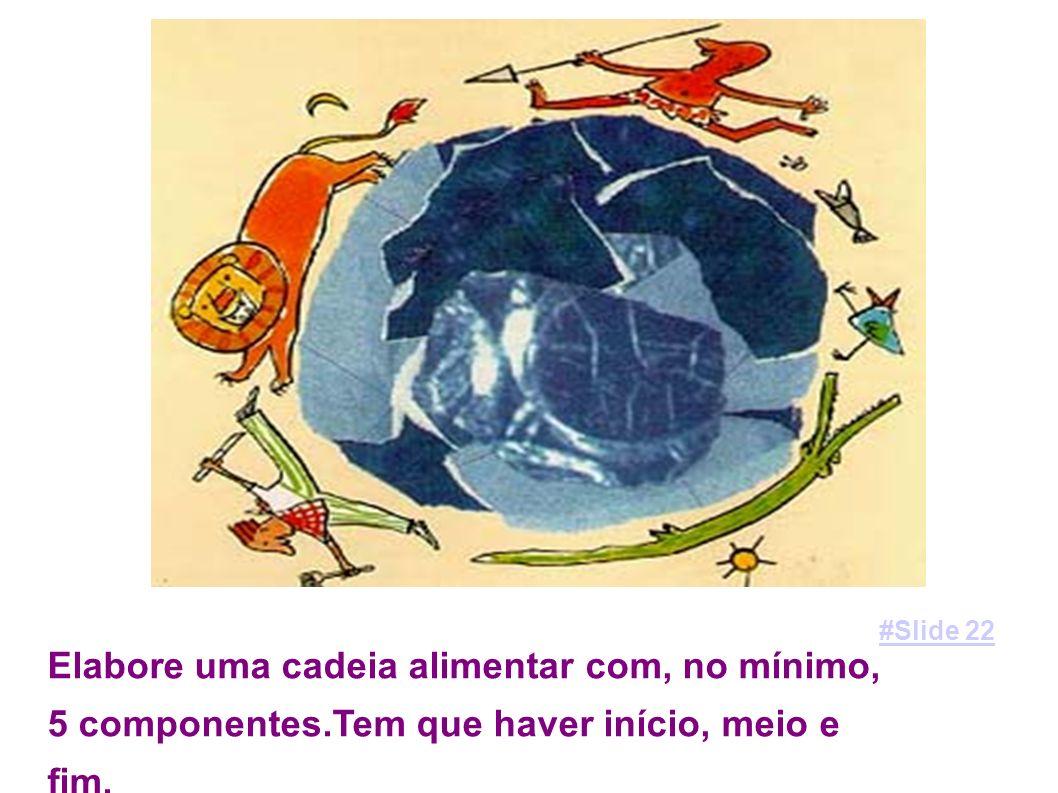 visite o site; http://web.educom.pt/escolovar/plantas_fotossi.htm http://web.educom.pt/escolovar/plantas_fotossi.htm #Slide 23