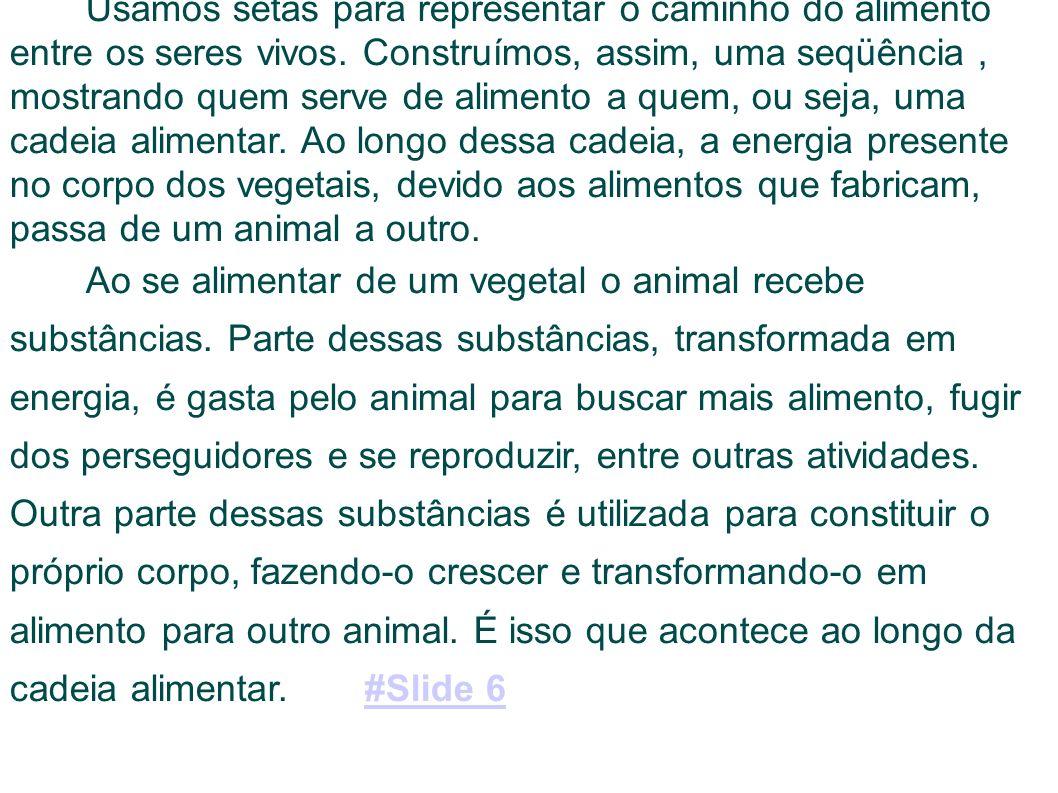 Tarefas 1)- Monte cadeias alimentares correspondentes aos seguintes seres vivos: caramujo, pardal, zebra, leoa, coruja e truta.