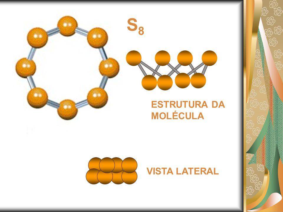 S8S8 ESTRUTURA DA MOLÉCULA VISTA LATERAL