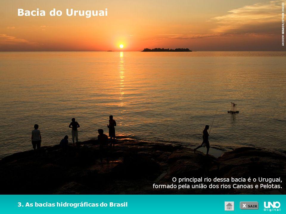 X SAIR O principal rio dessa bacia é o Uruguai, formado pela união dos rios Canoas e Pelotas. 3. As bacias hidrográficas do Brasil Bacia do Uruguai AN