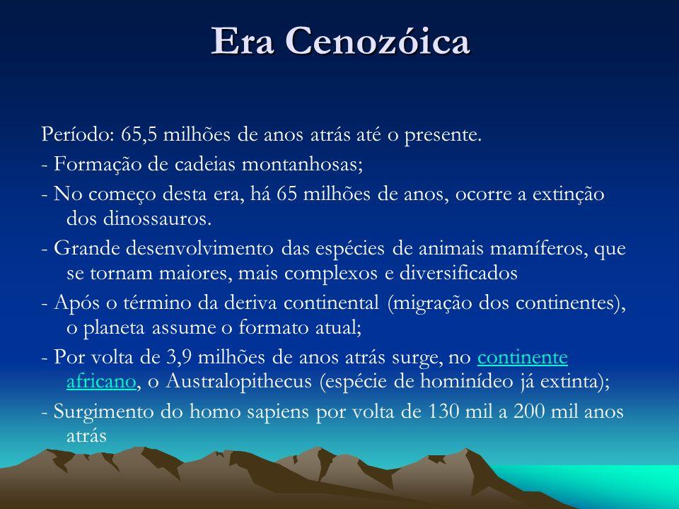 Era Cenozóica Período: 65,5 milhões de anos atrás até o presente. - Formação de cadeias montanhosas; - No começo desta era, há 65 milhões de anos, oco