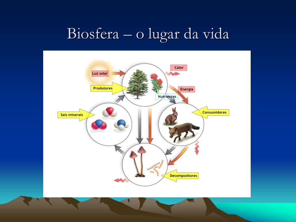 Biosfera – o lugar da vida
