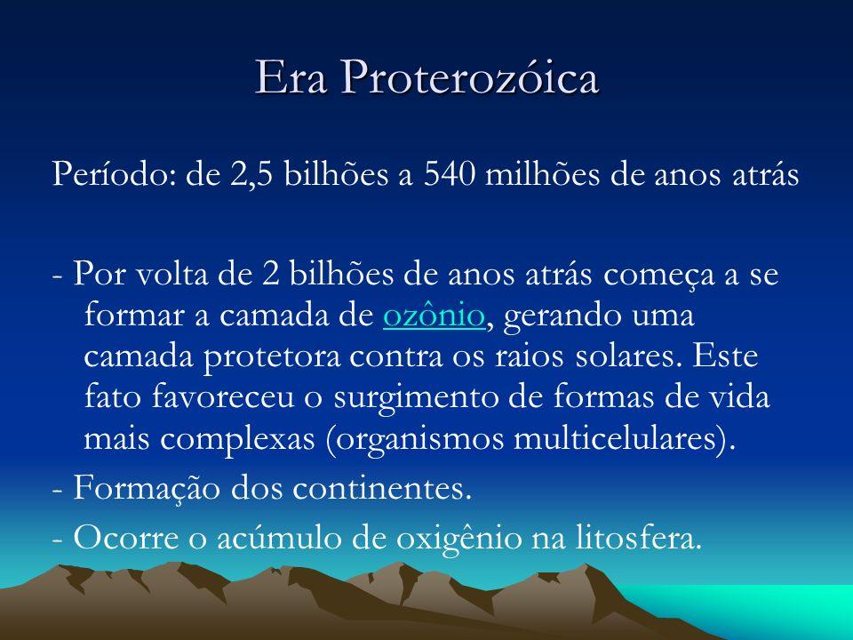 Era Proterozóica Período: de 2,5 bilhões a 540 milhões de anos atrás - Por volta de 2 bilhões de anos atrás começa a se formar a camada de ozônio, ger
