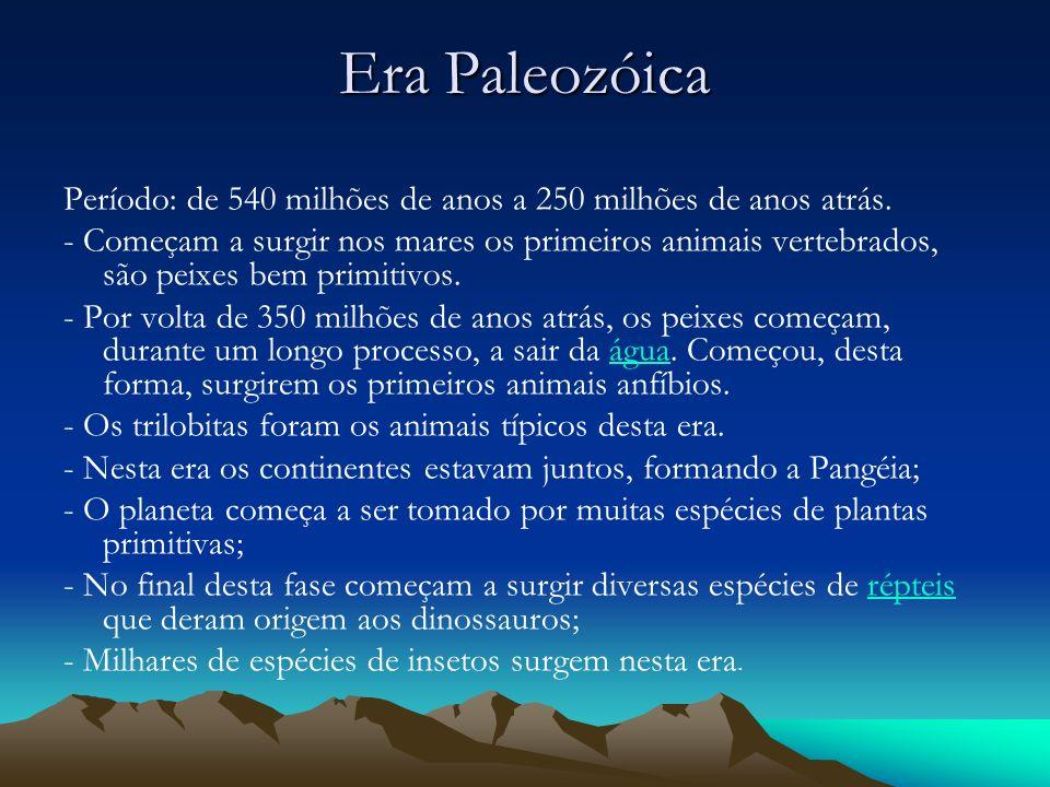Era Paleozóica Período: de 540 milhões de anos a 250 milhões de anos atrás. - Começam a surgir nos mares os primeiros animais vertebrados, são peixes