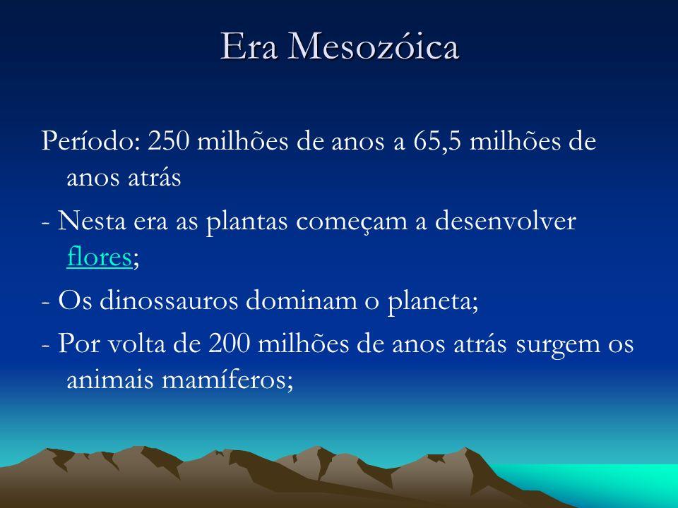 Era Mesozóica Período: 250 milhões de anos a 65,5 milhões de anos atrás - Nesta era as plantas começam a desenvolver flores; flores - Os dinossauros d