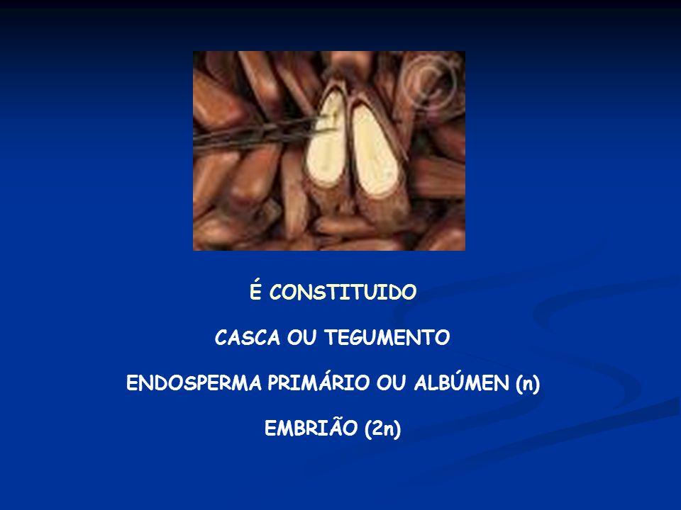 POLINIZAÇÃO ANEMÓFILA = VENTO (MAIORIA) ENTOMÓFILA = INSETOS DISPERSÃO DA SEMENTE AVE = ORNITOCORIA (GRALHA AZUL)
