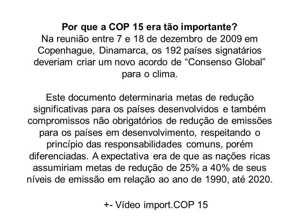 Por que a COP 15 era tão importante? Na reunião entre 7 e 18 de dezembro de 2009 em Copenhague, Dinamarca, os 192 países signatários deveriam criar um