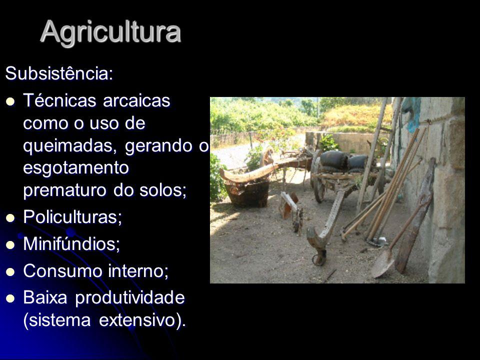 AgriculturaSubsistência: Técnicas arcaicas como o uso de queimadas, gerando o esgotamento prematuro do solos; Técnicas arcaicas como o uso de queimada